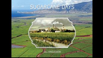Sugarcane Days